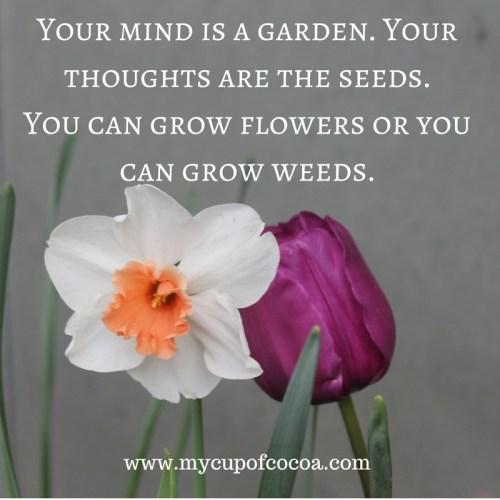 Inspirational & Seasonal Spring Quote
